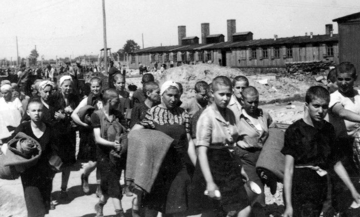 4. Novo prido_la grupa _enskih zatvu Auchwitz-Birkenau who have been selected for work have been stripped of their identities. They have been registered, shaven of all body hair,